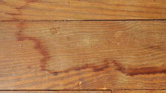 Get Stains Out Of Hardwood Floors
